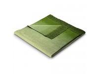 biederlack Sofa 50x200 cm I Sesselschoner Ombre Sofaschoner 60% Baumwolle 40% dralon I Made in Germany grün hellgrün