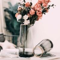 Licht Luxus Gold Vase Net Promi Transparent Glas Wohnzimmer Ornamente Dekoration Kreative Einfache Nordic Aquatische Blume Ar Vasen