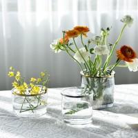 Nordic dekoration hause Transparent Hydrokultur Getrocknete blumen vase gläser anlage Vasen dekorateur trinkgläser wohnzimmer Terrarium Vasen