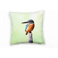 Paul Sinus Art Tiere Eisvogel türkis orange grün Deko Kissen 40x40cm für Couch Sofa Lounge Zierkissen - Dekoration zum Wohlfühlen