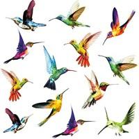 KAIRNE 24 Stücke Fenstersticker Vögel Vogel Fensteraufkleber Transparent Kolibri Fenster Aufkleber Tiere Wandtattoo Wandaufkleber für Wohnzimmer Schlafzimmer Wanddeko Schutz vor Vogelkollisionen