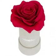 Relaxdays Rosenbox rund 1 Rose stabile Flowerbox grau 10 Jahre haltbar Geschenkidee dekorative Blumenbox rot