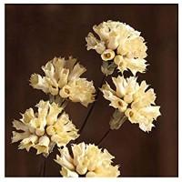 Simulation Garden Künstliche Trockenblumen Unsterbliche Blumensträuße Künstliche Nelken Natürliche Trockenblumen Blumenarrangements 8 STÜCKE Gelb