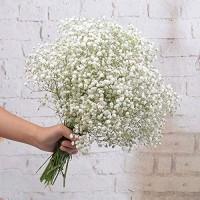 FEIGO 6 Stück Hochzeits Dekoration Schleierkraut Künstlich Gypsophila Kunstblumen Perfekt für Zuhause Hochzeit Party Dekor Blumenstrauß Weiß