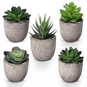 Homemaxs Mini gefälschte Pflanzen 5 PCS künstliche Sukkulenten in Töpfen dekorative Pflanzen für Schreibtisch Heim Bürodekor mit grauen Retro-Töpfen und stoßfester Verpackung