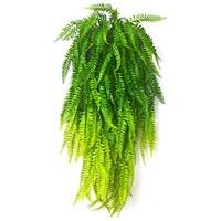 Künstliche Blumen künstliche Blumen Wisteria Efeu Kunstseide grüne Blätter zum Aufhängen für Hochzeiten Zuhause Küche Büro Wand Party-Dekoration 5 Stück grün