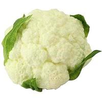 24station [C] Künstliches lebensechtes Gemüsegemüseimitat-Gemüse-Ausgangsdekor