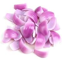 WYZQ Künstliche Früchte realistische künstliche Lebensmittel Gemüse Zwiebelsimulation Hot Pot Material Beilage Modell Zwiebelscheibe Fotografie Requisiten Farbe: 1