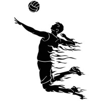 Hhuycvff vwuig Volleyballspiel Spieler Sportball Mode Wandaufkleber Lichtschalter Aufkleber